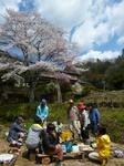 2014-3 伊勢神宮&桜 018.JPG